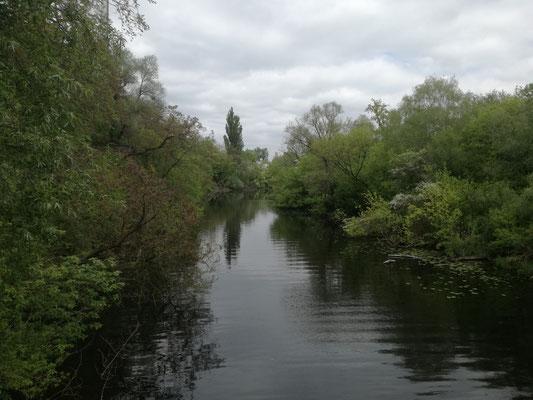 Zehlendorfer Stichkanal
