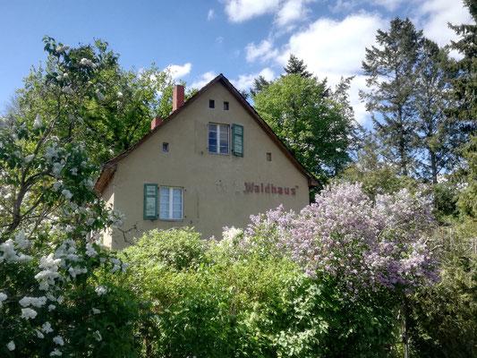 Haus in Albrechts Teerofen