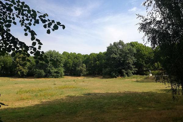 Volkspark Rehberge