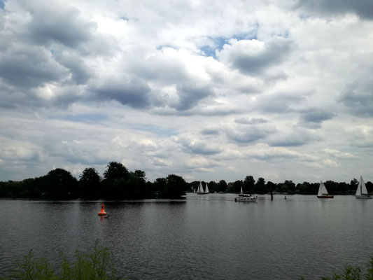 Havelufer Heiligensee von Nieder Neuendorf aus gesehen