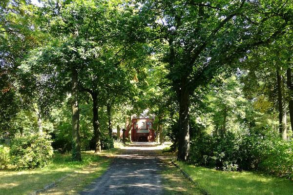 Waldfriedhof Oberschöneweide