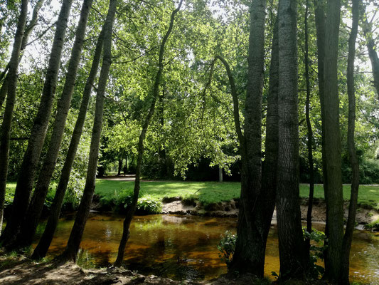 Panke im Schloßpark Niederschönhausen