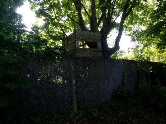 Mauerzaunreste -  Mauerweg / Teltowkanal