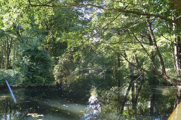 Schlosspark Berlin Buch - @Sebastian Wallroth - CC BY 4.0 - WikiCommons