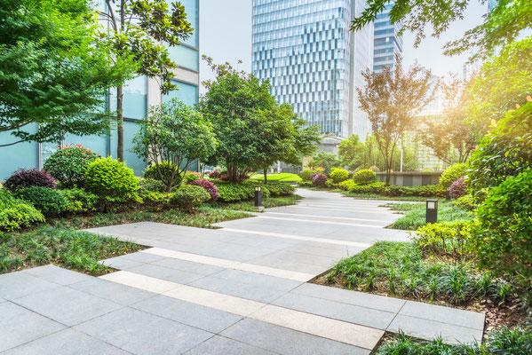 Firmengarten Grünanalge Mischbepflanzung Weg aus Betonplatten
