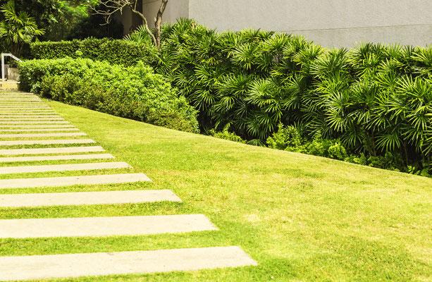 Stadtgarten mit großer Rasenfläche und Trittplatten Rechteck Betonplatten