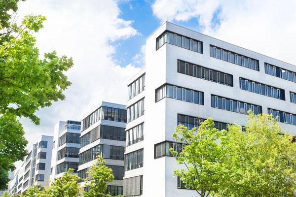 Bürogebäude Firmengarten mit Solitärgehölzen
