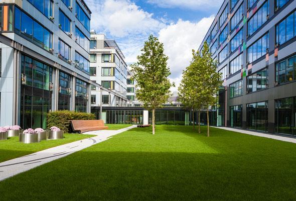 Firmengarten für Mitarbeiter Grünfläche Rasen mit Gehölzen und Holzbank Sitzbank