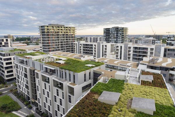 Pflege nicht vergessen für Dachbegrünung und Dachgarten mit Sedum Gräser Kräuter