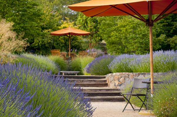 Bauerngarten mit Lavendelpflanzung und Hochbeeten aus Naturstein Sandstein