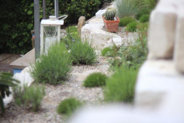 Terrassiertes Pflanzbeet in Leonberg aus Juraklak Naturstein Mauer mit Splittabdeckung Pflanzung aus Lavendel Kräuter Gräser