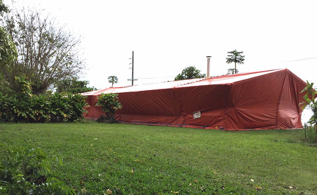 Amy Greenwell house with termite tenting