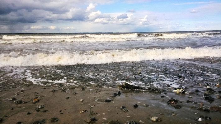 Auch im Winter lockt der Strand zu einem Spaziergang!