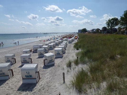 Strandkörbe auf dem feinen Sandstrand