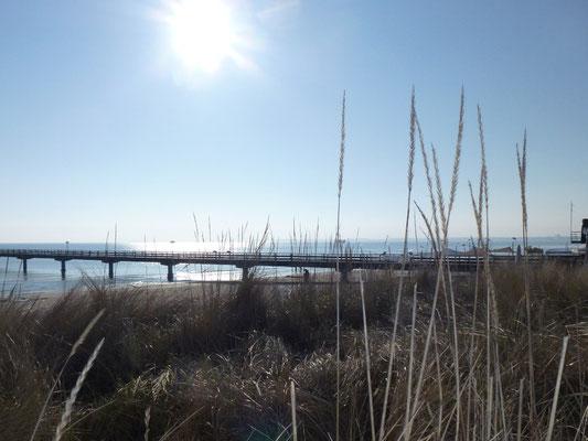 Strand in Scharbeutz mit der Seebrücke im Hintergrund