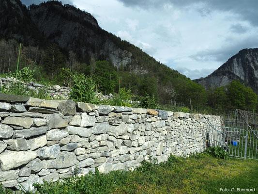 Natursteinmauer, Malans