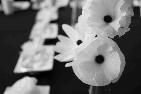 fiesta-banco&negro-flores-papel