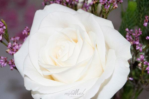 boda-gema&alberto-rosa