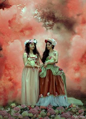 Les fleurs d'Alice / Alice's flowers