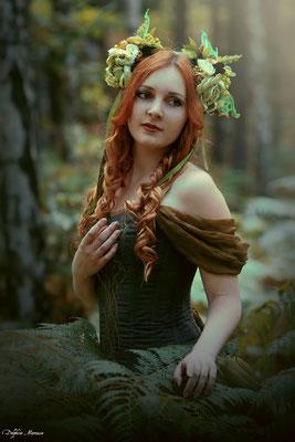 L'esprit de la forêt / The spirit of the forest