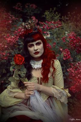 La reine rouge / The red queen