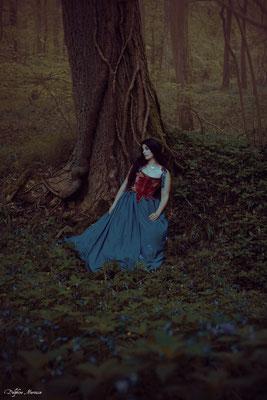 La fée des jacinthes / The bluebells' faery