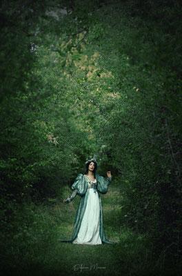 La reine des fées / The faeries' queen
