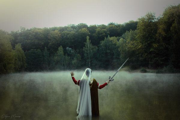 Les brumes d'Avalon / The mists of Avalon