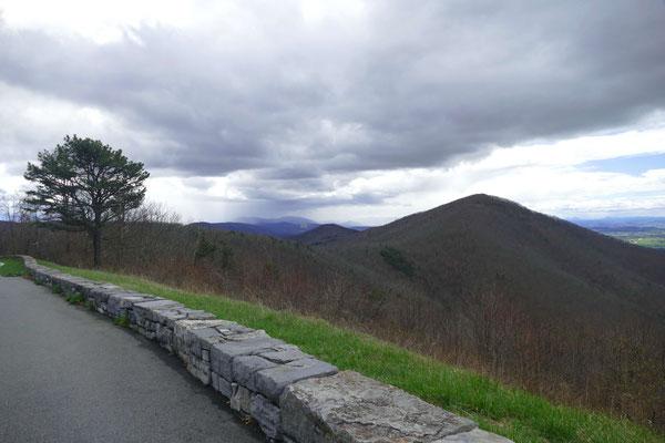 Blick über die bewaldeten Berge