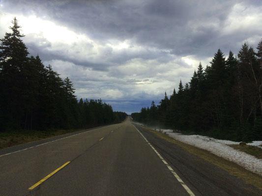 Auf der Parkstraße im Fundy Nationalpark