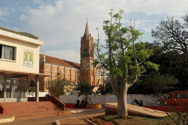 Baobab-Baum?