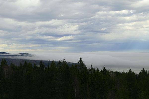 Nebel schleicht vom Atlantik in die Erhebungen des Fundy NP
