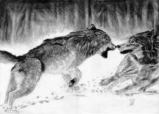 Jeu de Loups