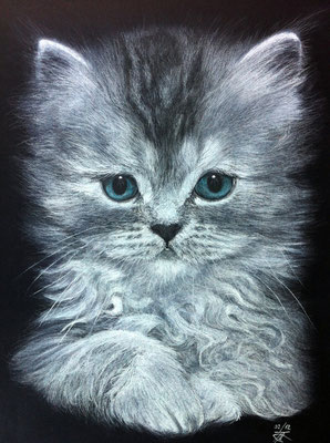 Chaton de Margot Dessin