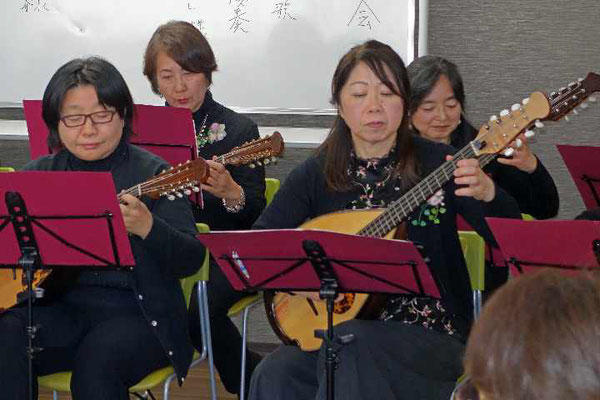 マンドラ、マンドロンチェロは豊かな低音を響かせます。