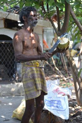 danach macht der Pflücker uns gleich eine frische grüne Kokosnuss auf (ca. 1/2 Liter Kokoswasser)