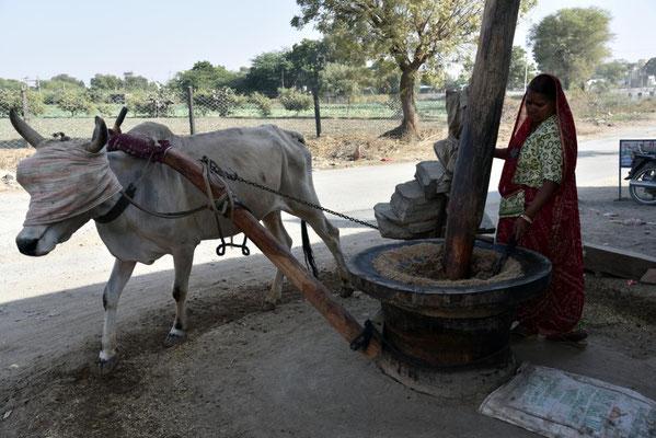 eine Mühle - hier werden Früchte zu einem Brei