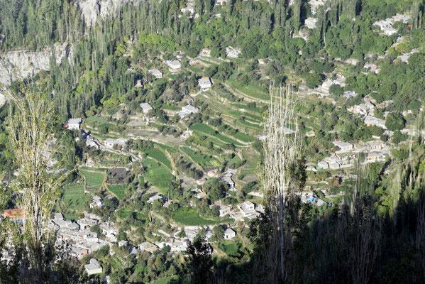 terrassenförmiger Feldbau