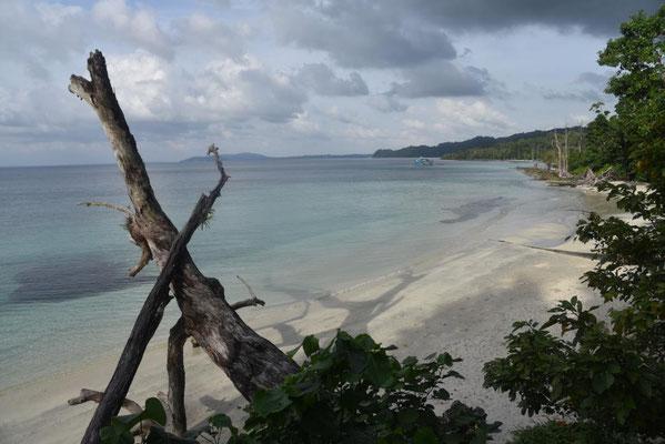 Elephant Beach - keiner da