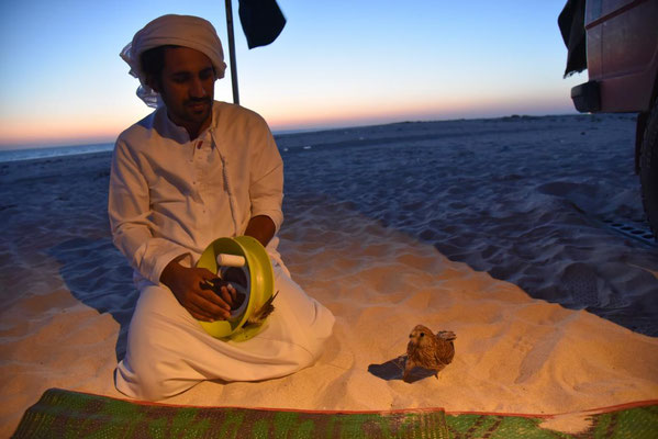 Omani mit Falkenjungen