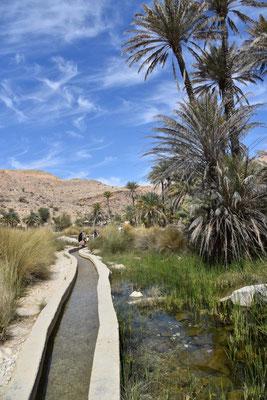 der Weg ins Wadi Bani Khalid