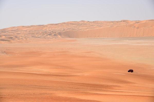 kleines Bussel allein in der großen, weiten Wüste