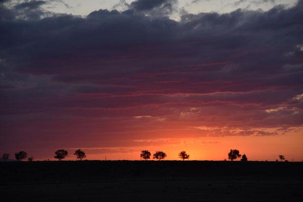 Sonnenuntergang kurz vor Bishkek