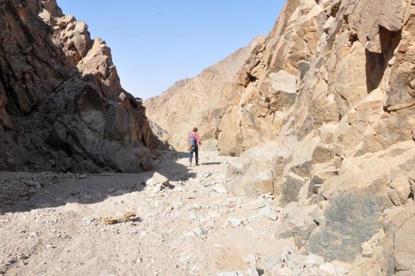 im Canyon