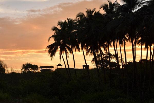 Abendstimmung in Goa