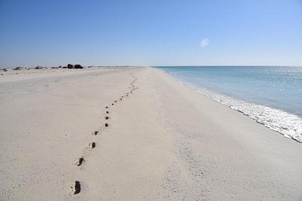 unser einsamer Strand - 3 Palm Lagon