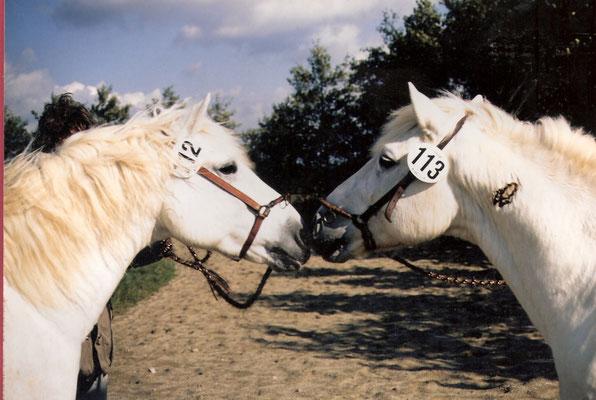Janet und Kaolin