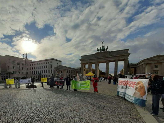 Demo gegen Tierversuche 24.10.20 Berlin