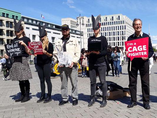 Protestkundgebung gegen Kaninchenhaltung
