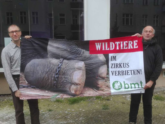 Tierschutzpolitischer Sprecher der SPD im Berliner Abgeordnetenhaus